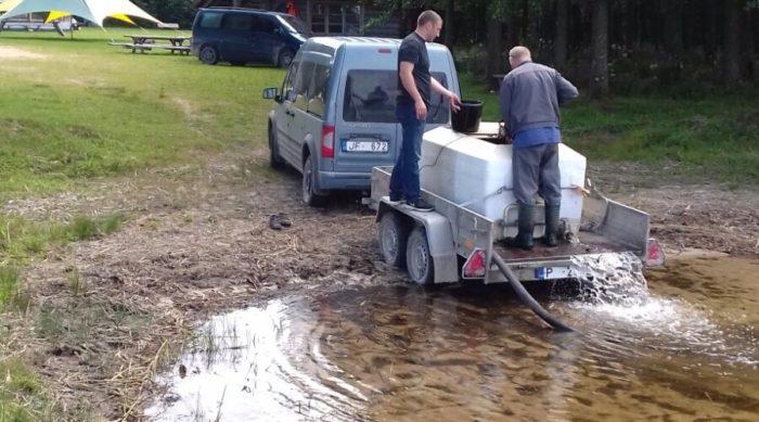 Usmas ezerā ielaisti vienvasaras zandartu mazuļi