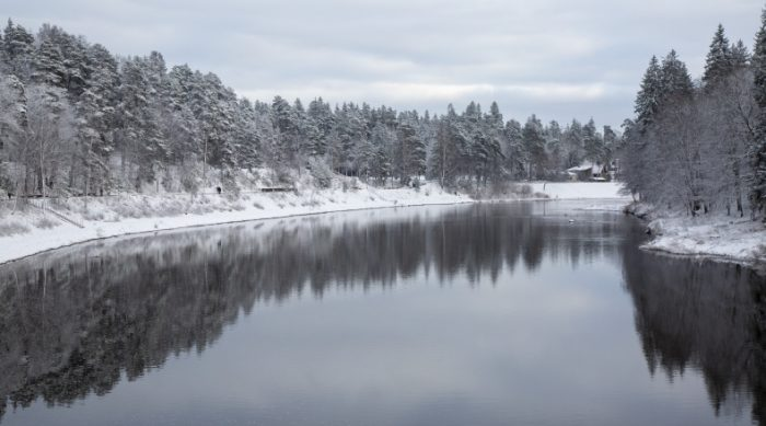 Radio vilks dabā: Upes – Latvijas asinsvadi